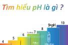 TÌM HIỂU pH LÀ GÌ ?